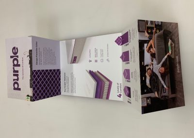Purple_Brochure